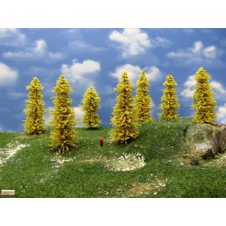 TT - stromy,modříny 10 -12cm,20ks (33/M1/TT)