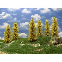 34M1TT - Autumn larches, height 16-18cm, 12pcs