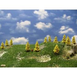 37M1TT-Bäume,Lärchen,Höhe 4-5cm,30 Stück