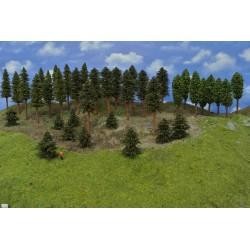 Forest TT16 - Spruces, pines, deciduous, height 5-17cm, 38pcs