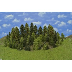 Forest HO4, spruces, pines, green larches, 3-18 cm