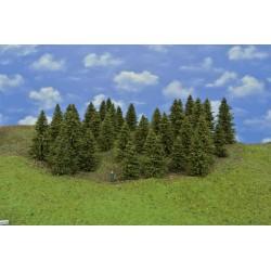 Forest HO10 , spruces, 5-12cm, 43pcs