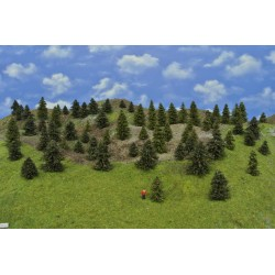 Forest TT17 - Spruces, pines, height 3-8 cm, 65pcs