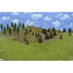 Forest TT19 - Spruces, pines, autumn larches, deciduous, height 3-10 cm, 50pcs