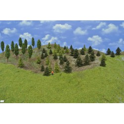 Forest TT20 - Spruces, pines, green larches, deciduous, height 3-10 cm, 50pcs