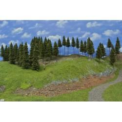 Wald N3 , Bäume, Fichten, 12-19cm,60 Stück