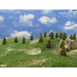 3S1N - Spruces, height 3-4cm, 30pcs