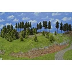 Wald N10, Bäume, Fichten, Kiefern, Lärchen, 3-16cm,75 Stück