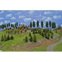 LES N13, smrky, borovice, modříny, okrasné, listnaté, 3-13cm