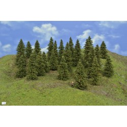 Forest N30 - Spruces, height 5-10cm, 25pcs