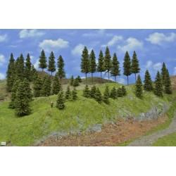 Wald N16 , Bäume, Fichten, 3-14cm,50 Stück
