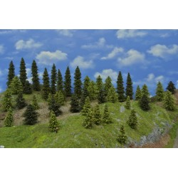 Forest N20 - Spruces, pines, green larches, height 3-17cm, 45pcs