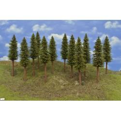 13S2HO - Spruces 18-20cm, 12pcs