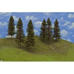 20S3HO-stromky,smrky,výška 24-27cm,6ks
