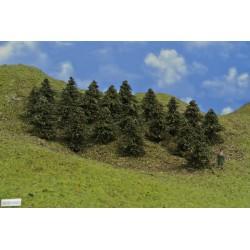 38B1HO-stromky,borovice,výška 5-6cm,20ks