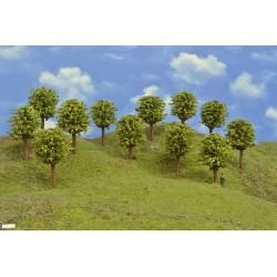 49Z1HO-runde Bäume, grün, 8-9cm,12St