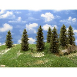 11S2HO - Spruces, height 10-14cm, 16pcs