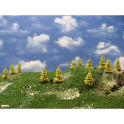 37M1HO - Autumn larches, height 3-5cm, 30pcs