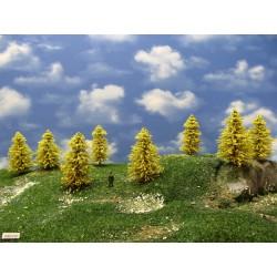 30M1HO - Autumn larches, height 6-9cm, 20pcs