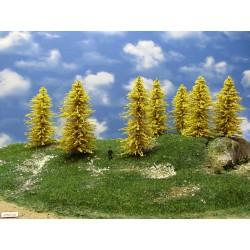 32M1HO - Autumn larches, height 13-14cm, 12pcs