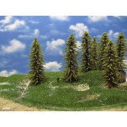 34MZ1HO-stromky,smrky,výška 16-18cm,12ks