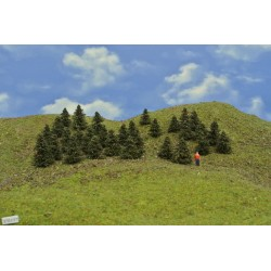 37B1TT - Pines, height 3-4cm, 30pcs