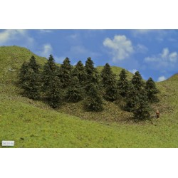 38B1TT - Pines, height 5-6cm, 20pcs