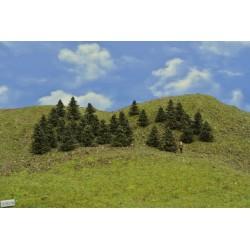 37B1N - Pines, height 3-4 cm, 30pcs