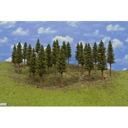 10S2TT-stromy,smrky,výška 14-15cm,20ks