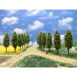 51Z2TT - Deciduous trees, height 9-10cm, 20pcs