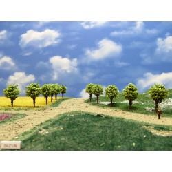 54Z1N - Deciduous trees, height 4cm, 30pcs