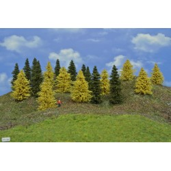 Forest TT29 - Spruces, autumn larches, height 6-10 cm, 20pcs