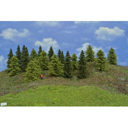 Forest TT30 - Spruces, green larches, height 6-10 cm, 20pcs