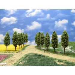 51Z2N - Deciduous trees, height 9-10cm, 20pcs