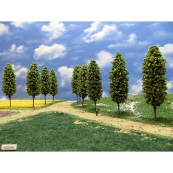 52Z2N - Deciduous trees, height 13cm, 16pcs