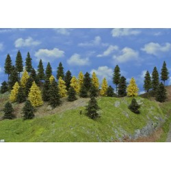 Forest N24 - Spruces, pines, autumn larches, height 5-14cm, 40pcs