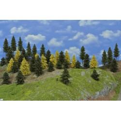 Wald N24,Bäume,Fichten,Kiefern,Lärchen,5-14cm,40 Stück