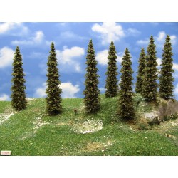 14S2N - Spruces, height 14-17cm, 20pcs