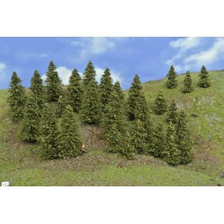 Forest N31 - Spruces, height 4-8cm, 30pcs