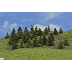 Forest N33 - Spruces, pines, height 3-5cm, 30pcs