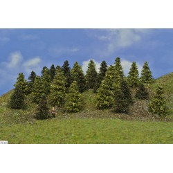 LES N35, borovice, modříny, 3-5cm