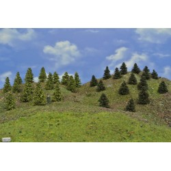 Forest HO24, Pines, green larches, 3-5 cm, 30pcs