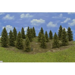 Forest HO25, Spruces, height 7-12 cm, 18pcs