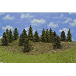 Forest HO27, Spruces, pines, height 9-12 cm, 16pcs