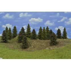 LES HO27, smrky, borovice, 9-12 cm