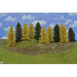 Forest HO28, Spruces, autumn larches, 13-18 cm, 10pcs