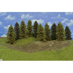 Forest HO29, Spruces, autumn larches, height 13-18 cm, 10pcs