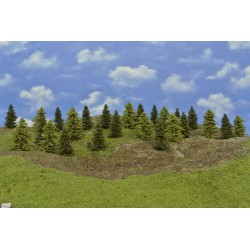 Forest HO32, Spruces, green larches, height 5-9 cm, 25pcs