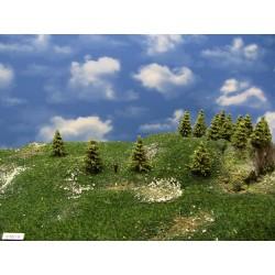 37MZ1N-Lärchen grün,Höhe 3-5cm,30 Stück