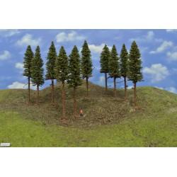 10S2KTT-mit Wurzeln und trockenen Zweigen auf Baumstämmen,15-17cm,10St